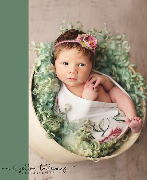Lambertville Newborn Photographer